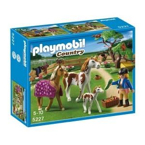 Cuidadora con Caballos - 5227 - Playmobil